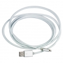 GSP iPhone Lightning Cable 2m Silver