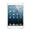 iPad mini glasbyte OEM