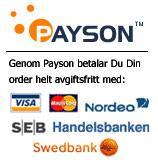 Payson betalning